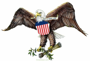 "The Bald Eagle has been a symbol of the United States since our founding. It is said to represent the freedom and personal liberty that is so central to ""Americanism."" Credit: http://greatseal.com/symbols/eagle.html"