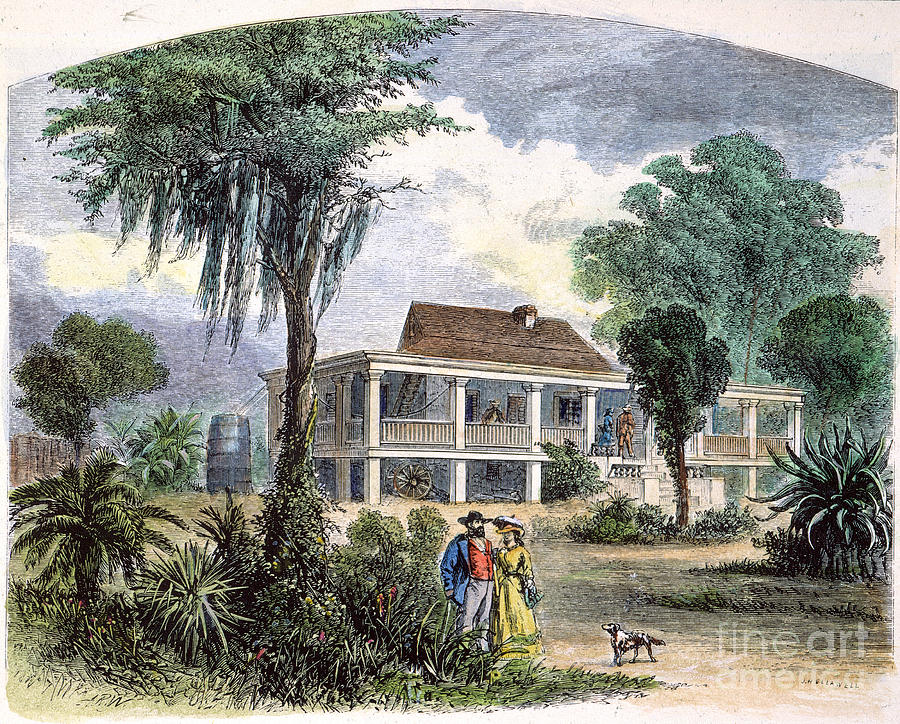 Flower on the Precipice: An Examination of Southern ...