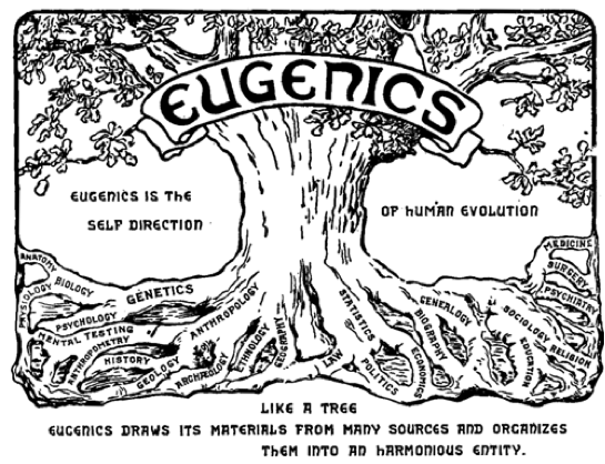 Untitled.png eugenics tree